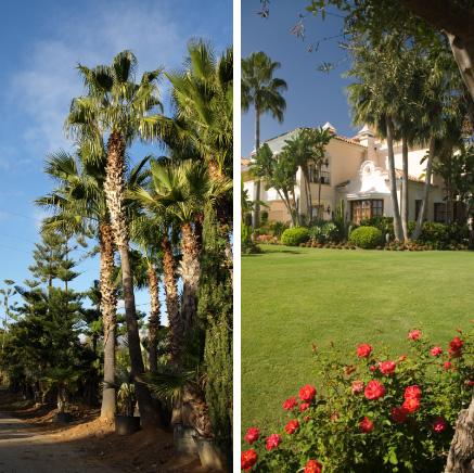 Floryplant Paisajismo y Jardinería